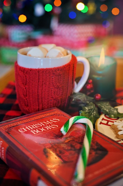 christmas-3000059_640